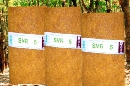 Mủ cao su SVR5